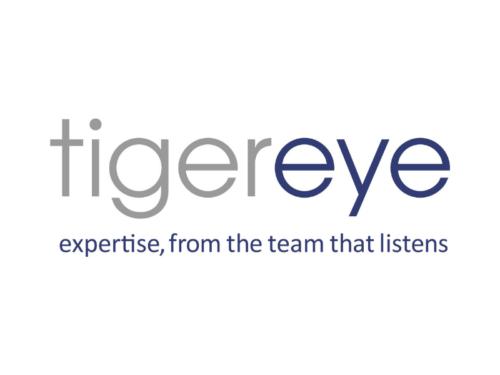 Tigereye Consulting Logo
