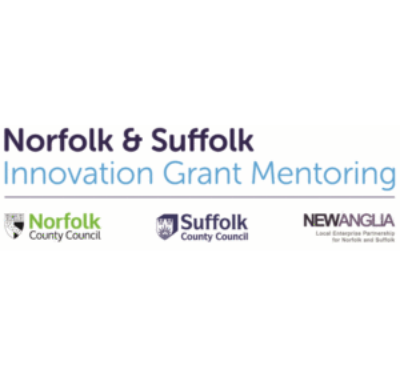 INNOVATION GRANT MENTORING PROJECT
